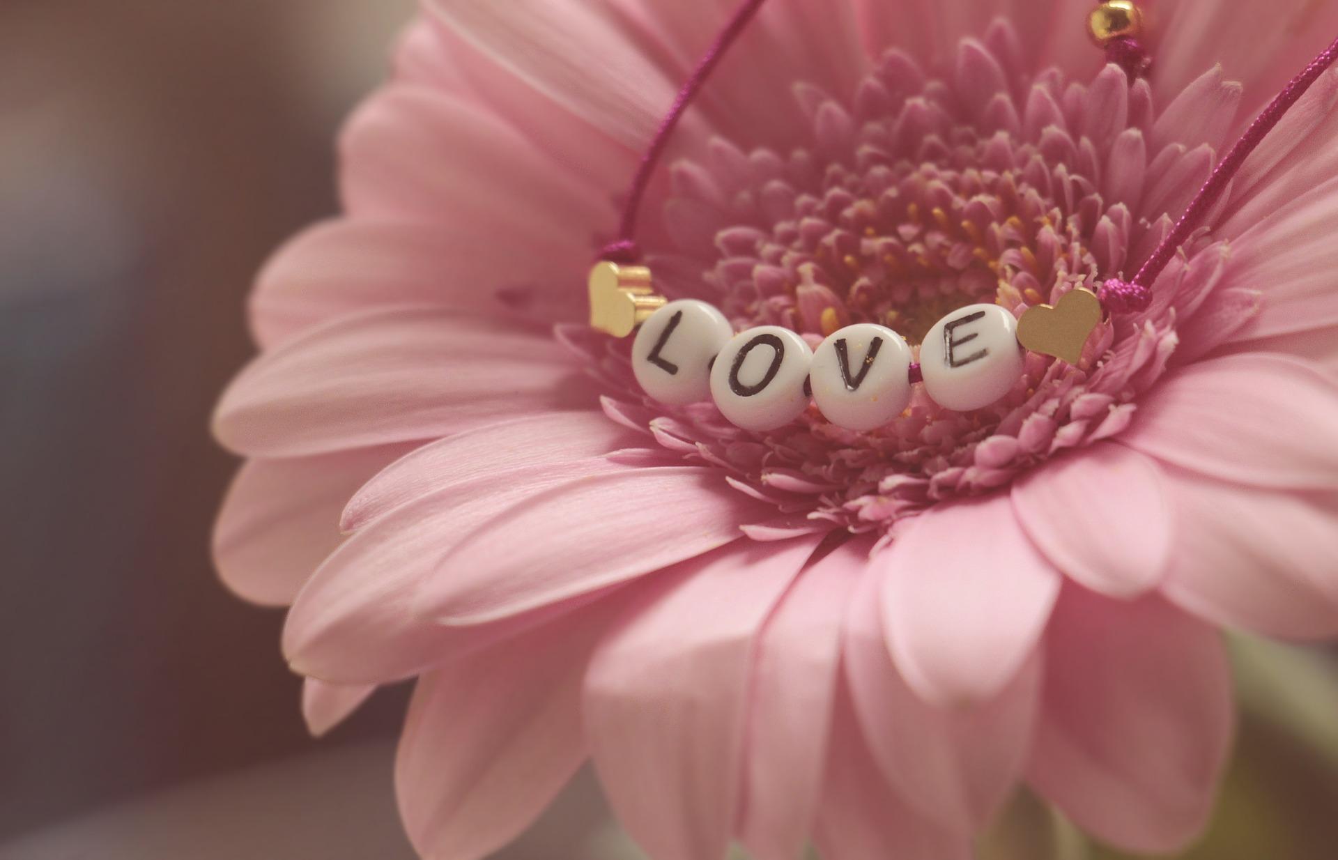 14 Romantic Scenes We Love: Part 2   www.familywiseasia.com