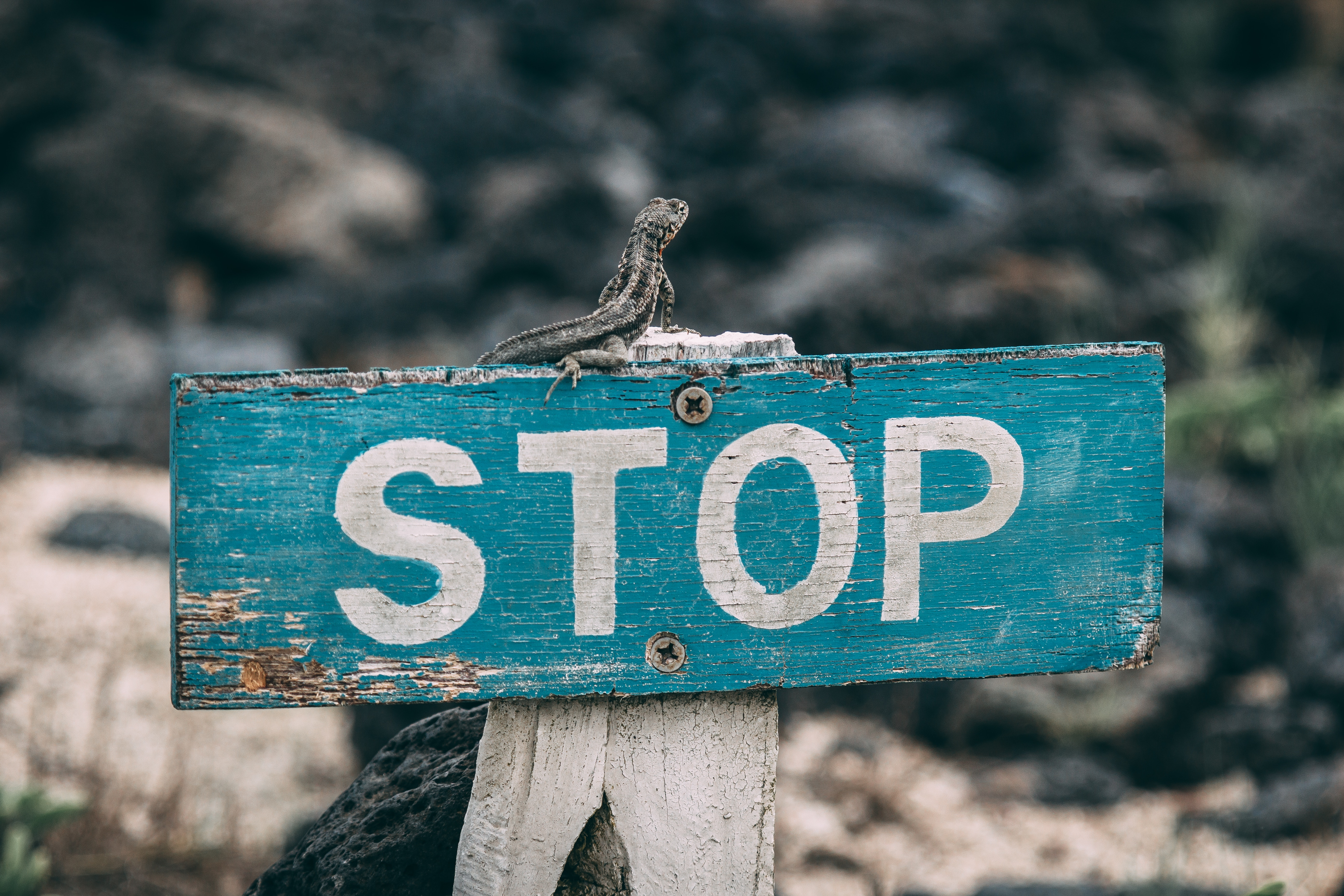 5 Things to Do, Stop, & Continue